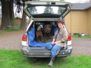 Subaru farm jitney.